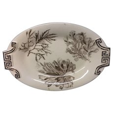 1883 ~ Wedgwood Aesthetic Movement Brown Transferware Side Platter ~ SEAWEED