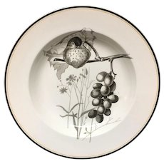 1870 ~ Pierre Mallet Brown Transferware ORNITHOLOGY Soup Plate