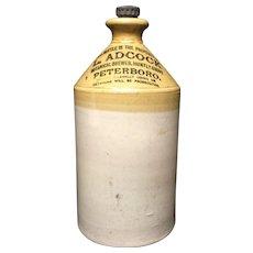 1911 ~ Ginger Beer Stoneware ~ Botanical Brew Beer