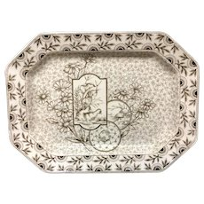 1884 ~ Brown Transferware English Platter ~ DEVONSHIRE 1884