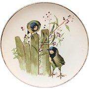 Pierre Mallet Polychrome ORNITHOLOGY Pottery Plate ~ 1870