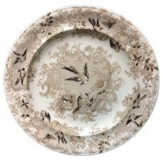 Ornithological Transfer Printed Wedgwood Plate 1870
