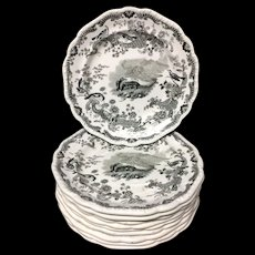Eight Zoological Sketches Transferware Plate ~ Skunk 1820