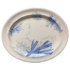 1883 ~ Aesthetic Movement Blue Transferware Large Platter ~ Seaweed Pattern