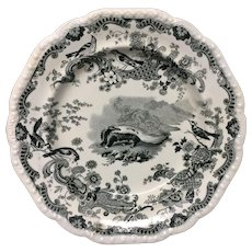 Zoological Sketches Pearlware Transferware Skunk Plate 1820