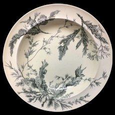 Wedgwood Black Transferware Soup Plate ~ SEAWEED 1883