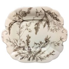 1883 Brown Transferware Biscuit Plate ~ SEAWEED 1883