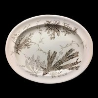 Aesthetic Movement Brown Transferware Meat Platter ~ Seaweed 1883