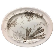 Aesthetic Movement Brown Transferware Meat Platter ~ Seaweed 1883