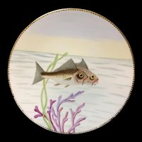 Superb Hand Painted Staffordshire Fish Aquatic Porcelain Plate ~ 1870