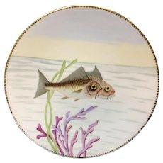 Superb Hand Painted Staffordshire Fish Aquatic Porcelain Plate ~ 1870