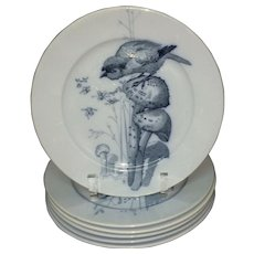 6 ~ Pierre Mallet Blue Transferware ORNITHOLOGY Plates ~ 1870