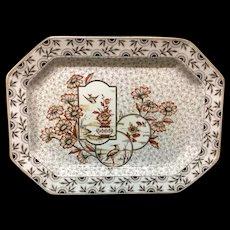 Gorgeous Large Victorian Aesthetic Transferware Platter ~ Devonshire 1884