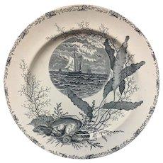 Victorian Black Transferware Seashells Seaweed Plate ~ OCEANIC 1882