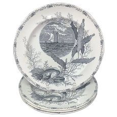 Four Victorian Black Transferware Seashells Seaweed Plates ~ OCEANIC 1882