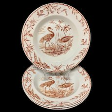 Exotic Birds INDUS Soup Plates x 4 ~ 1885