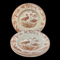 Exotic Birds INDUS Soup Plates x 4 ~ 1885