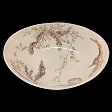 Rare Brown Wedgwood Fruit Bowl ~ SEAWEED 1883