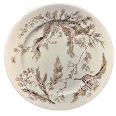 Wedgwood Brown Transfer Printed Plate ~ SEAWEED ~ 1883