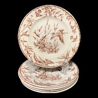FOUR INDUS Exotic Birds Transferware Plates ~ 1885