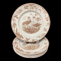 Six INDUS Aesthetic Movement EXOTIC BIRDS Transferware Plates ~ 1885