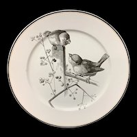 Pierre Mallet Brown Transferware ORNITHOLOGY Canova Plate ~ 1870