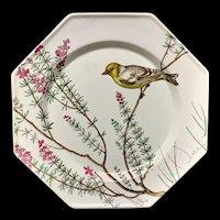 Rare Minton Ornithological Hand Painted Plate ~ ESSEX BIRDS 1862