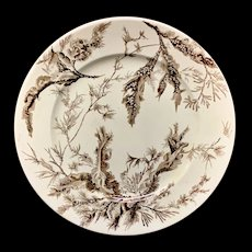 Wedgwood Brown Transferware Plate ~ SEAWEED 1883 P