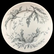 Wedgwood Black Transferware Plate ~ SEAWEED 1883