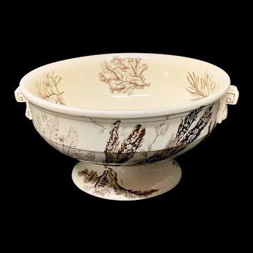 Rare Brown Wedgwood Centerpiece Fruit Bowl ~ SEAWEED 1883