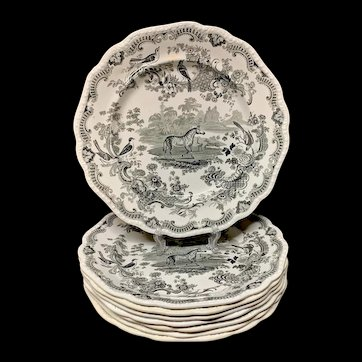 8 ~ Zoological Sketches Staffordshire Plates ~ ZEBRA 1820