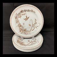 Six Brown Transferware Aesthetic Movement Era Plates ~ Dragonfly 1877