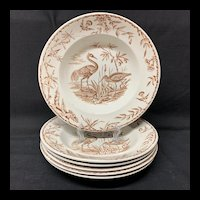 Six Exotic Birds INDUS Soup Plates Brown Transfer ~ 1885
