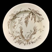 Brown Transfer Printed Wedgwood SoupPlate ~ SEAWEED 1883