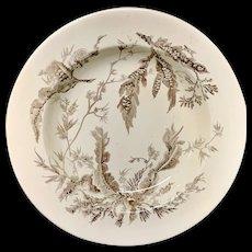 Brown Transfer Printed Wedgwood SoupPlate ~ SEAWEED 1883
