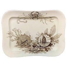 Large Antique  Seaweed + Seashells + Crab Platter ~ OCEANA 1886