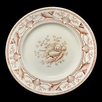 English Nantasket Brown Transferware Plate ~ Seaweed Seashells 1876