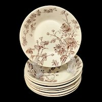 Eight Aesthetic Movement Era Chutney Dishes ~ CHYSANTHEMUM ~ 1890