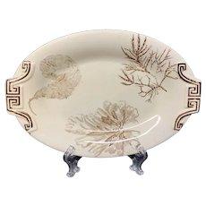 Super Brown Transferware Relish Platter ~ SEAWEED 1883