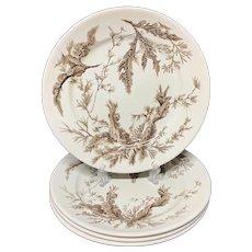4~ Brown Wedgwood Staffordshire Large Dinner Plates ~ SEAWEED 1883