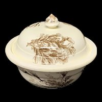 Brown Transferware Covered Butter or Cheese Pot ~ SEAWEED 1883