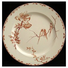 Amazing Brown Transferware Plate ~ ANEMONE 1880