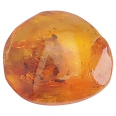 Genuine natural Baltic amber gemstone stone w insect mosquito bugs inclusions 5g