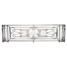 A Long Belle Époque Antique Wrought Iron Balcony Gate from Argentina
