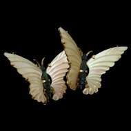 Butterfly Earrings Mother-of-Pearl 12k Gold Filled over Sterling Silver by Ocean Treasures