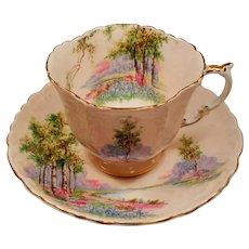 Vintage Aynsley Bone China Blush Pink Bluebell Time Woodland Scene Teacup and Saucer