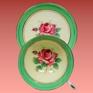 Vintage Paragon England Pink Roses Spring Green Teacup & Saucer