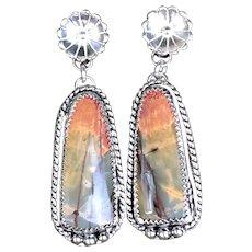 Cherry Creek Jasper Sterling Silver Post Earrings