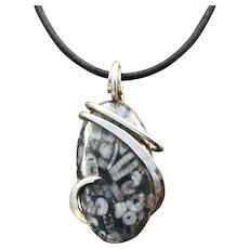 Turitella Agate Wire Wrapped Pendant Necklace