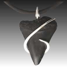 Fossilized Great White Shark Tooth Wrapped Pendant Necklace